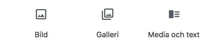 Hur ikonerna för Bild, Galleri och Media och Text ser ut.