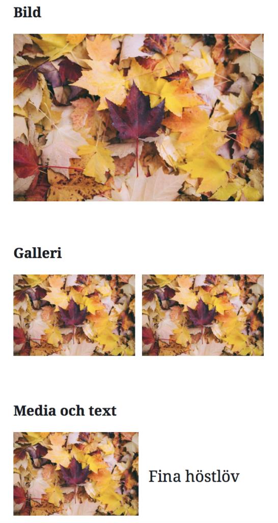 """Förhandsvisning av hur olika bildblocken Bild, Galleri och """"Media och text"""" ser ut i Gutenberg."""